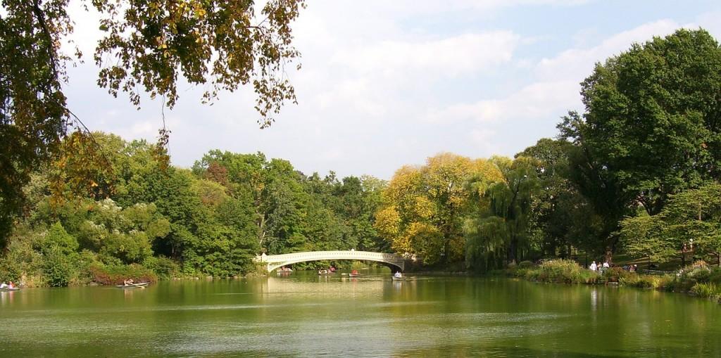 central-park-470977_1280